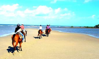 Afternoon Beach Horse Ride Thumbnail 2