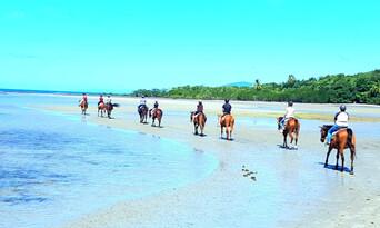 Afternoon Beach Horse Ride Thumbnail 6