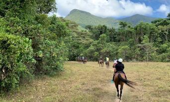 Afternoon Beach Horse Ride Thumbnail 5