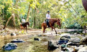 Afternoon Beach Horse Ride Thumbnail 4