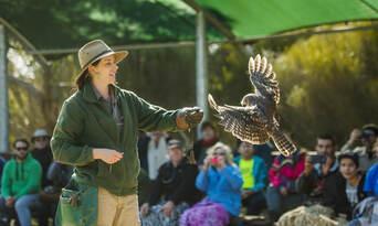 Kangaroo Island 2 Day Tour from Adelaide including Accommodation Thumbnail 4
