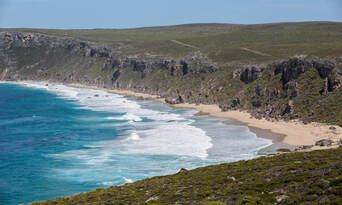Kangaroo Island 2 Day Tour from Adelaide including Accommodation Thumbnail 6
