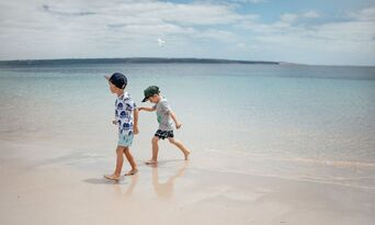 Kangaroo Island Full Day Tour from Adelaide including Lunch and Wine Tastings Thumbnail 3