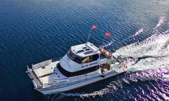 Mou Waho Island Cruise and Nature Walk Thumbnail 6