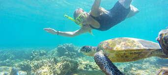 Summertime Sail & Kayak Day Trip Thumbnail 3