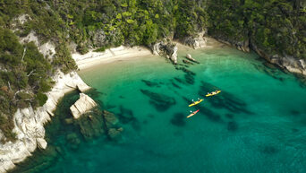 Southern Blend Kayak and Walk Afternoon Tour Thumbnail 2