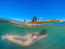Southern Blend Kayak and Walk Afternoon Tour Thumbnail 3