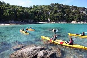Southern Blend Kayak and Walk Afternoon Tour Thumbnail 4