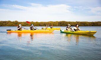 Dolphin Sanctuary Kayaking Tour Thumbnail 3