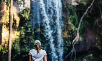Mt Tamborine Rainforest Walk Half Day Tour Thumbnail 5