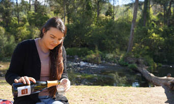 Full Day Tour Of Lamington National Park and O'Reilly's Winery Thumbnail 4