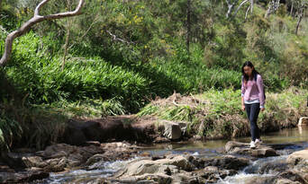 Morialta Wilderness and Wildlife Hike Thumbnail 6