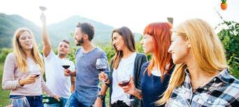 Full Day Mount Tamborine Wine Tasting Tour including Gourmet Lunch from Brisbane Thumbnail 3