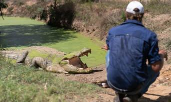Top End Safari Camp Day Tour Thumbnail 4