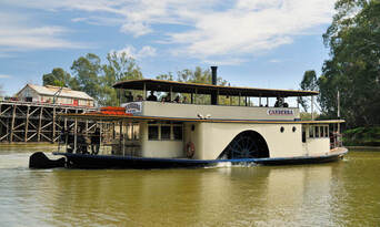 Murray River Paddlesteamers 1 Hour Sightseeing Cruise Thumbnail 3