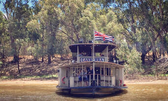 Murray River Paddlesteamers 1 Hour Sightseeing Cruise Thumbnail 5
