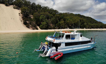 Moreton Island Dolphin Spotting and Snorkelling Cruise departing from Brisbane Thumbnail 5