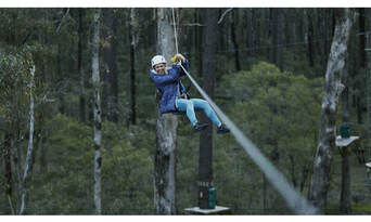 Forest Adventures High Ropes Course and West Park Entry Thumbnail 5