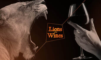 Lions, Wines and Limousine Thumbnail 3