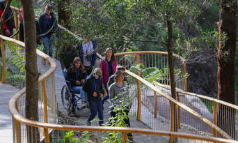 Walk with Wildlife Guided Conservation Tour Thumbnail 4
