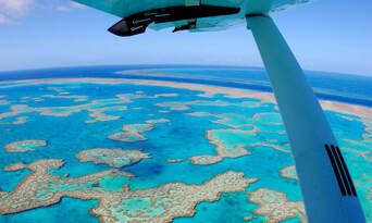 Island Explorer Thumbnail 2