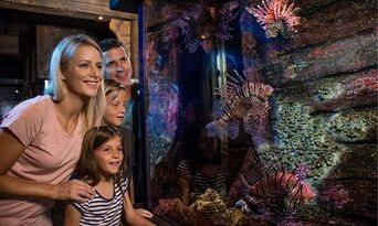 SEA LIFE Sunshine Coast + Aquaduck Combo Thumbnail 6