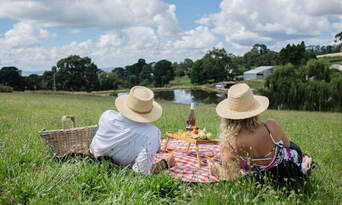 Printhie Wines Picnic And Guided Wine Tasting Tour Thumbnail 1
