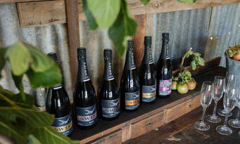 Printhie Wines Picnic And Guided Wine Tasting Tour Thumbnail 2