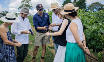 Sparkling Masterclass Wine Tour With Three Course Lunch Thumbnail 2
