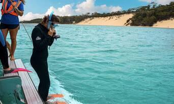 Best Of Moreton Bay 3 Island Safari Day Tour Thumbnail 1
