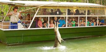 Hartleys Crocodile Adventures with Port Douglas Transfers Thumbnail 1