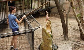 Hartleys Crocodile Adventures with Port Douglas Transfers Thumbnail 4