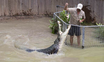 Hartleys Crocodile Adventures with Port Douglas Transfers Thumbnail 5