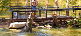 Hartleys Crocodile Adventures with Port Douglas Transfers Thumbnail 6