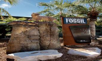 Guided Riversleigh Fossil Discovery Centre & Laboratory Thumbnail 5