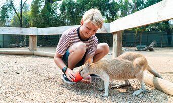 Annual Pass - Featherdale Sydney Wildlife Park + Mogo Wildlife Park Thumbnail 3