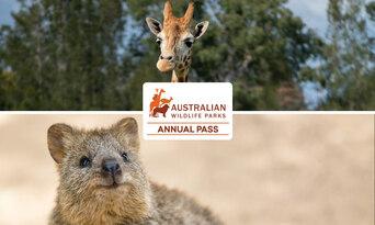 Annual Pass - Featherdale Sydney Wildlife Park + Mogo Wildlife Park Thumbnail 1