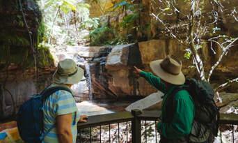 5 Day Carnarvon Gorge Hiking Tour Thumbnail 5