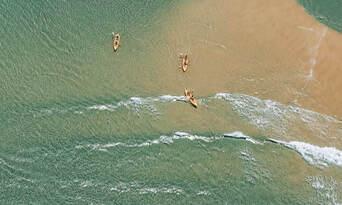 Noosa Dolphin View Kayak Tour Thumbnail 3