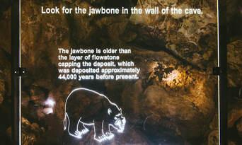 Margaret River Mammoth Caves Tour Thumbnail 4