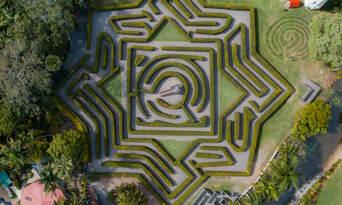 Bellingham Maze Entry Tickets Thumbnail 2