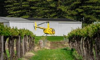 Barossa Valley Deluxe 30 Minute Flight Thumbnail 1