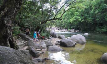 Go Troppo Port Douglas and Mossman Gorge Tour Thumbnail 5