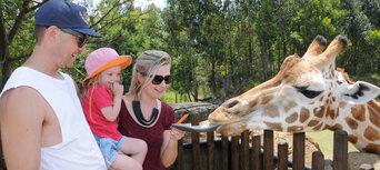 Australia Zoo and SEA LIFE Sunshine Coast Combo Ticket Thumbnail 6