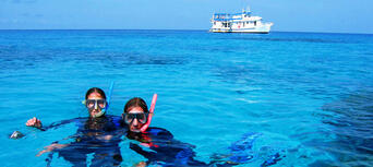 Museum Of Underwater Art And Great Barrier Reef Snorkeling Day Trip Thumbnail 2