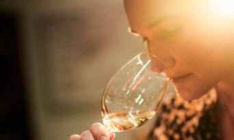 Vat 1 Semillon Vertical Wine Tasting Experience at Tyrrell's Wines Thumbnail 4