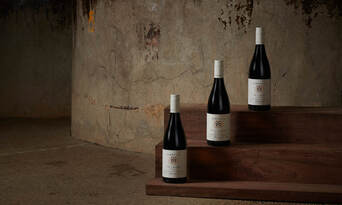 VIP Premium Tasting Experience at Tyrrells Wines Thumbnail 5