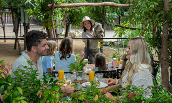 Currumbin Wildlife Sanctuary Family Entry + Meal Deal Thumbnail 2