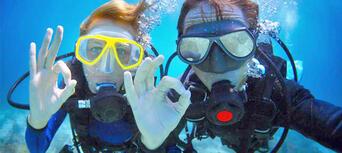 Gold Coast Introductory Scuba Dive Tour Thumbnail 4