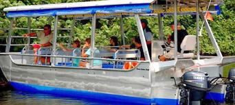 Daintree River Cruise Thumbnail 3